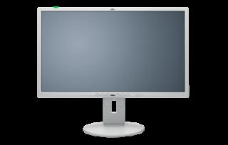 Fujitsu P24-8 TE Pro Monitor 24 Zoll