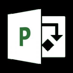 Microsoft Project Professional 2019 DE | PC